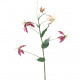 Gloriosa, L80cm, 4 Fleurs, 1 bourgeon, pourpre